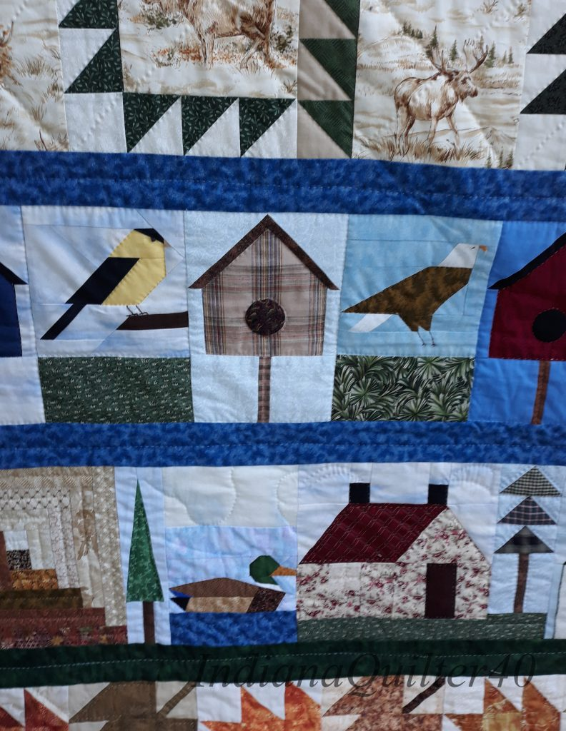 A close up of the bird  and house rows.