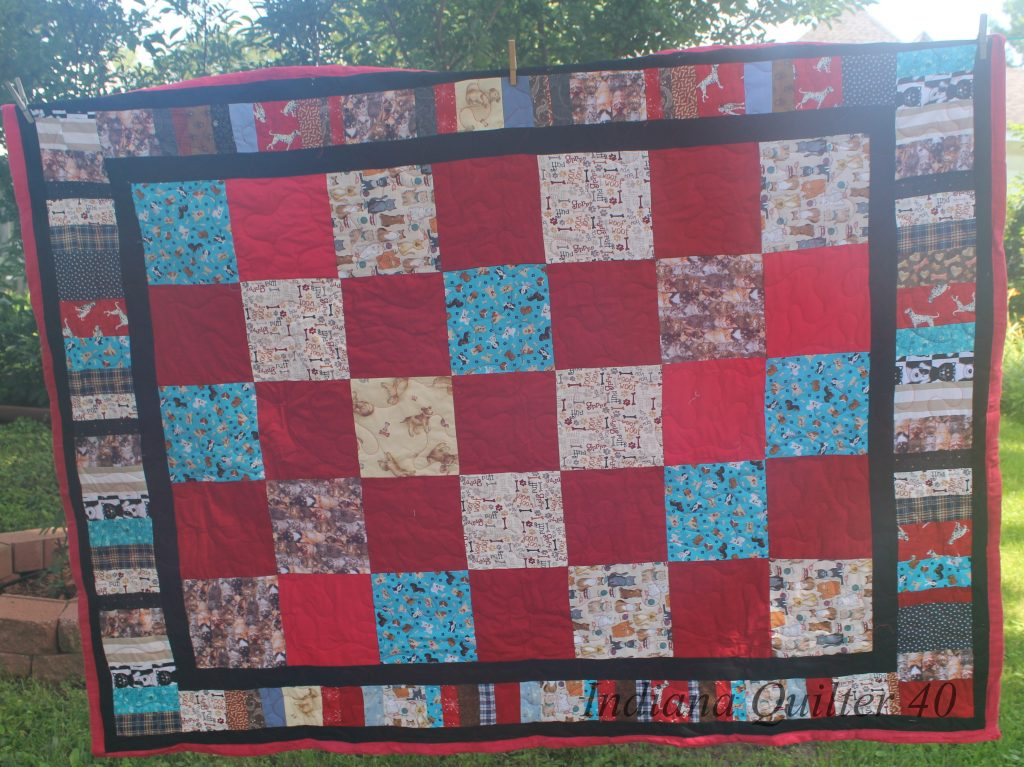 "Solid red blocks alternated with blocks featuring dogs and cats. Completed quilt with ""piano key"" border."